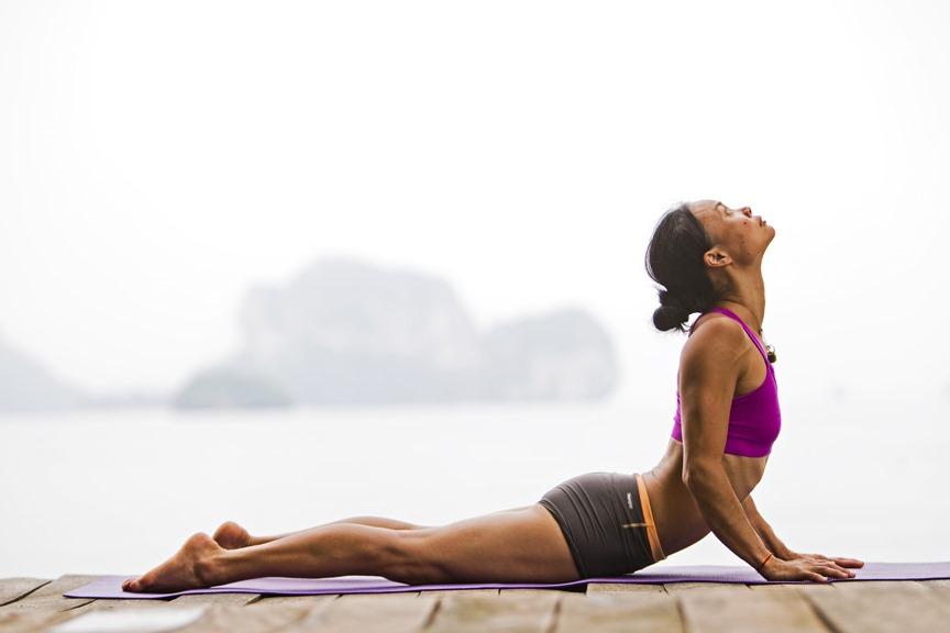 Quadriceps Exercises Quadriceps in This Exercise