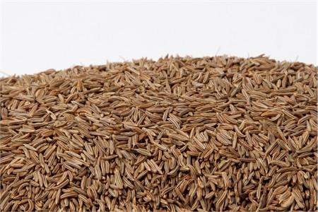 caraway seeds muscle spasm