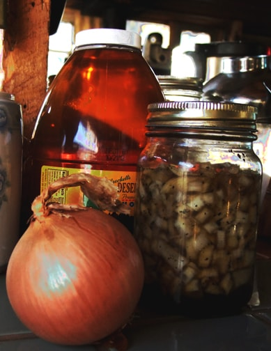 homemade onion and honey cough syrup